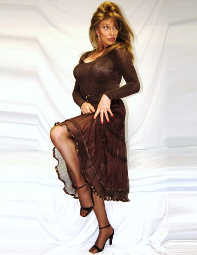 TSDee.com Shemale Escort Toronto Chocolate Brown Sheer Skirt