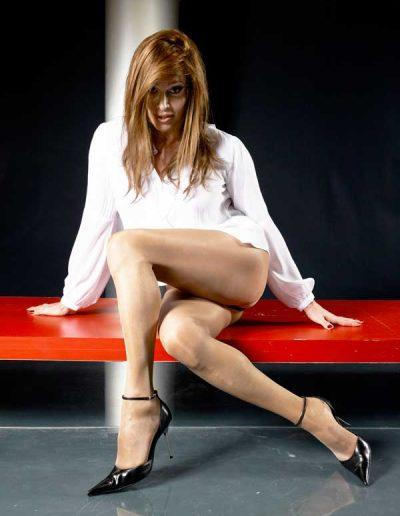 TSDee.com Business Blouse Shimmery PantyHose & Ankle Strap Stilettos